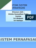 pp anatomi PERNAFASAN.pptx