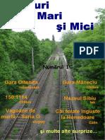 Trenuri-Mari-Si-Mici.pdf