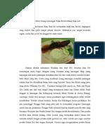 Mitos Orang Lamongan Tidak Boleh Makan Ikan Lele