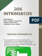 RIESGOS-INTRINSECOS-4