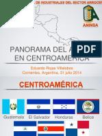 ARROZ en Centroamerica