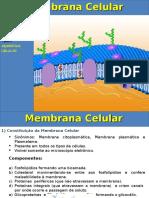 Aula_Membrana_celular.ppt