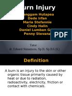 Referat - Burns Injury