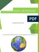 Poblaciones Silvestres (Completo) Ppt