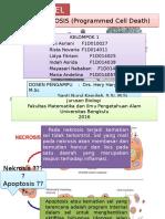 Apoptosis 1a