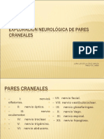 Exploración neurológica de pares cranelaes