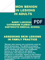 Common Benign Skin Lesions-dms2