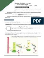 BioGeo10 Info Fotossintese