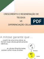 5-Diferenciao celular.pptx