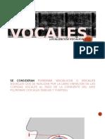Localización Vocálica