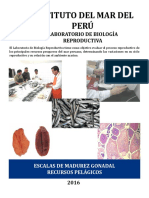 Cartilla _pelagicos