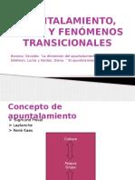 Apuntalamiento, Crisis y Fenómenos Transicionales