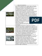 Tipos de Ecosistemas.docx