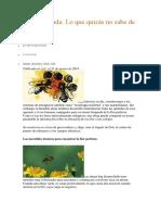 Guía ilustrada