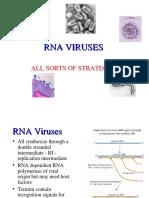 7_RNAviruses