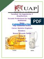 BIOPOLIMEROS PROTEINAS Y AMINOACIDOS.docx