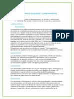 Biopolimeros Proteinas y Aminoacidos