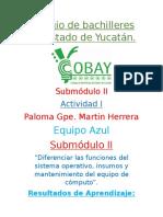 Submódulo II, competencias, Actividad 1