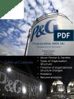 P&G Organisation 2005