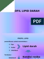 Lipid Profil