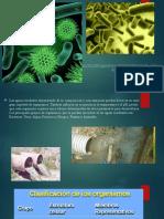 Aguas Bacterias