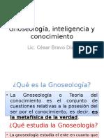 7._Gnoseologia_inteligencia_y_conocimiento (1)