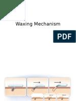 Waxing Mechanism