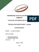 Investigacion Formativa III Unidad Endo II
