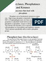 Phosphorylase, Phosphatases and Kinases