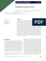 Evolutionary Stasis in Euphorbiaceae Pollen