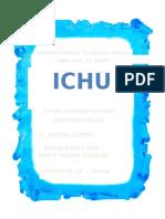 Ichu - Puno - Peru