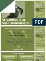 CN8 Cadeias Teias Alimentares