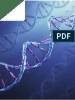 Práctica - Iluminación del ADN