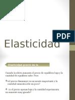 Capitulo 4 Elasticidad_oct 2015
