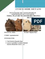 plan de negocio de cuy.docx