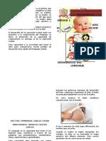Diptico Adquisición y desarrollo del lenguaje
