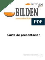 BILDEN 2015.doc