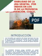 Vulnerabilidad de La Cobertura Vegetal Debido a Incendios