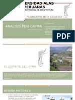 formulacion cayma aa33.pptx