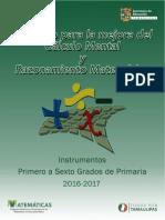 Instrumentos de Cálculo Primaria