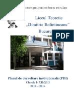 PDI_Bolintineanu_2010_2014.pdf