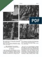 EK_1951-05-4-05.pdf