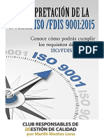 Interpretacion ISO 9001-2015 Revisiones