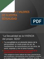 CREEMOS.pdf