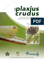 Haplaxius Crudus Monitoreo Del Insecto Vector de La Marchitez Letal en Palma de Aceite