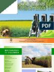 Biocombustibles en Colombia