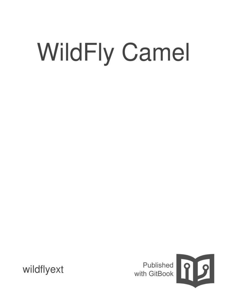 wildfly camel method computer programming representational