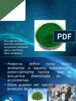Interacción de Los Agentes Contaminantes Del Cromo (1)