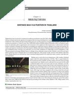 Shiitake Mushroom Cultivation in Thailand