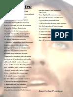 Dandreta - El Maestro